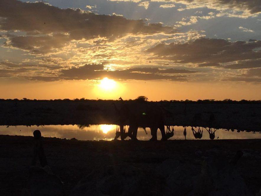 Safari Groepsreis Lodges - 19 DAGEN KAAPSTAD, NAMIBIË, BOTSWANA & VICTORIA FALLS 75