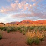 Safari Groepsreis Lodges - 19 DAGEN KAAPSTAD, NAMIBIË, BOTSWANA & VICTORIA FALLS 23