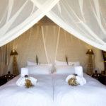 Safari Groepsreis Lodges - 19 DAGEN KAAPSTAD, NAMIBIË, BOTSWANA & VICTORIA FALLS 38
