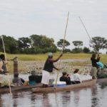 Safari Groepsreis Lodges 8 dagen botswana okavango delta en victoria falls avontuurlijk 9