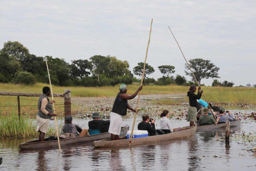 Safari Groepsreis Lodges 8 dagen botswana okavango delta en victoria falls avontuurlijk 101