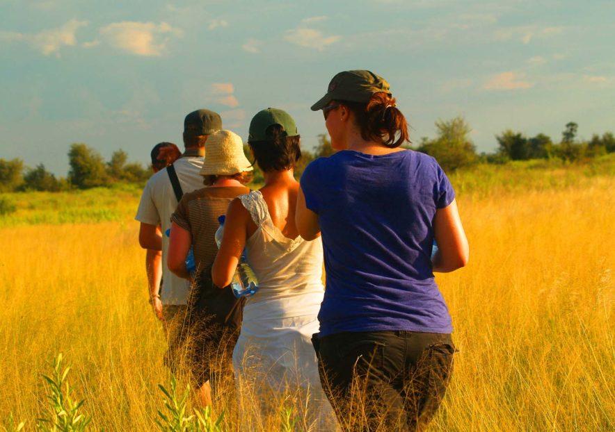 Safari Groepsreis Lodges 8 dagen botswana okavango delta en victoria falls avontuurlijk 46