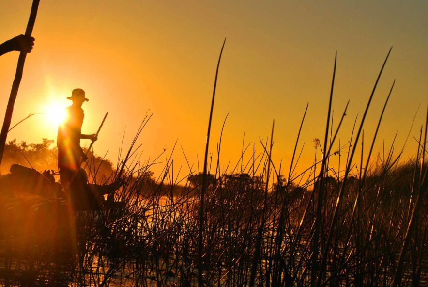 Safari Groepsreis Lodges 8 dagen botswana okavango delta en victoria falls avontuurlijk 93