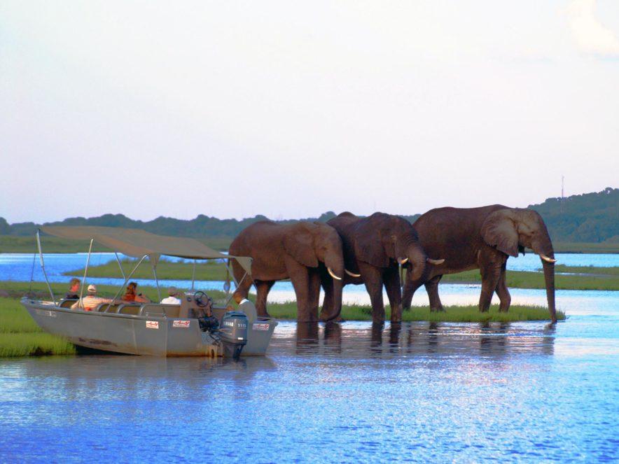 Safari Groepsreis Lodges 8 dagen botswana okavango delta en victoria falls avontuurlijk 47