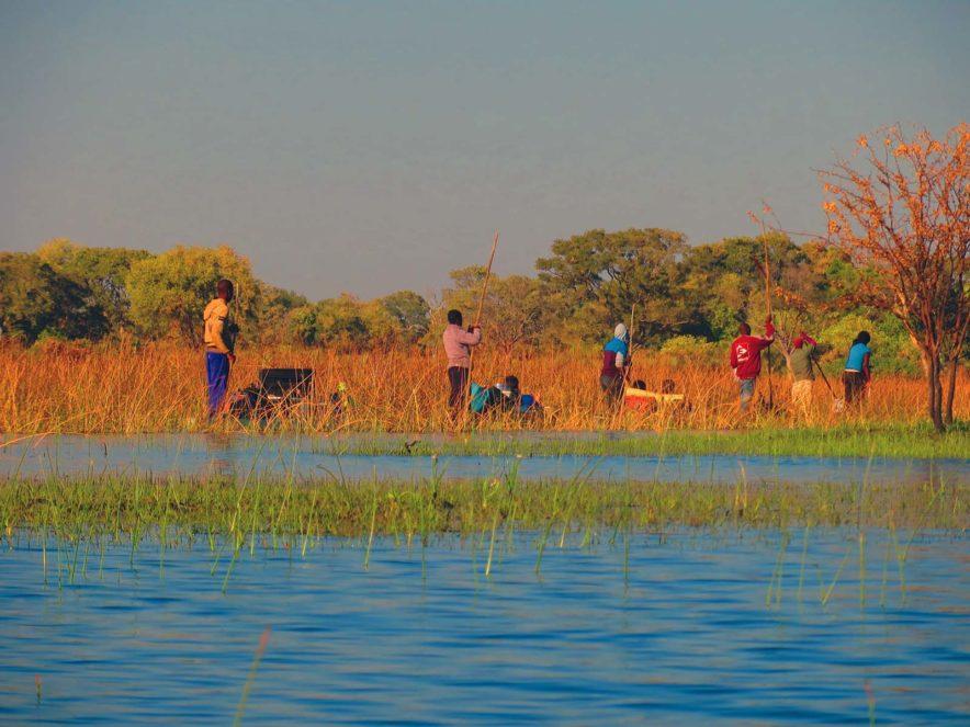 Safari Groepsreis Lodges 8 dagen botswana okavango delta en victoria falls avontuurlijk 90