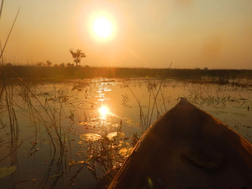 Safari Groepsreis Lodges 8 dagen botswana okavango delta en victoria falls avontuurlijk 85