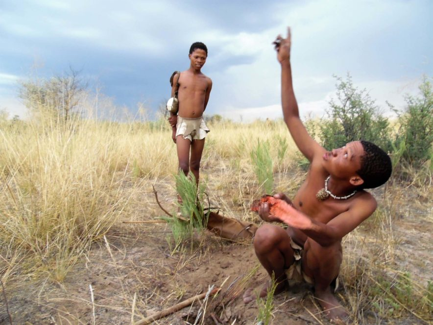 Safari Groepsreis Lodges - 19 DAGEN KAAPSTAD, NAMIBIË, BOTSWANA & VICTORIA FALLS 180