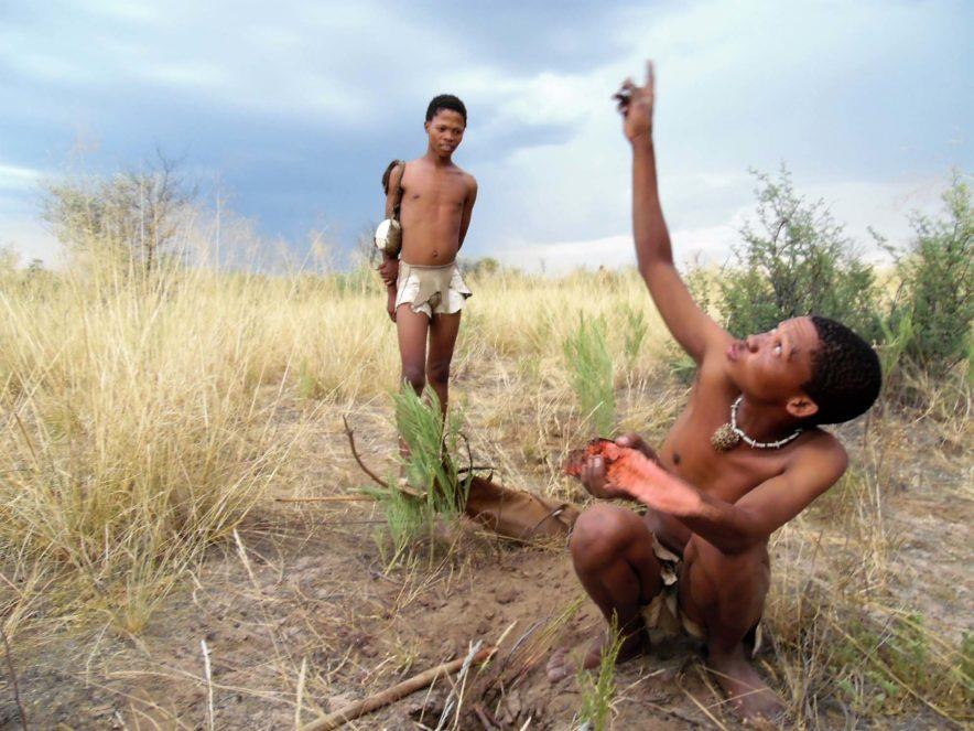Safari Groepsreis Lodges 8 dagen botswana okavango delta en victoria falls avontuurlijk 75
