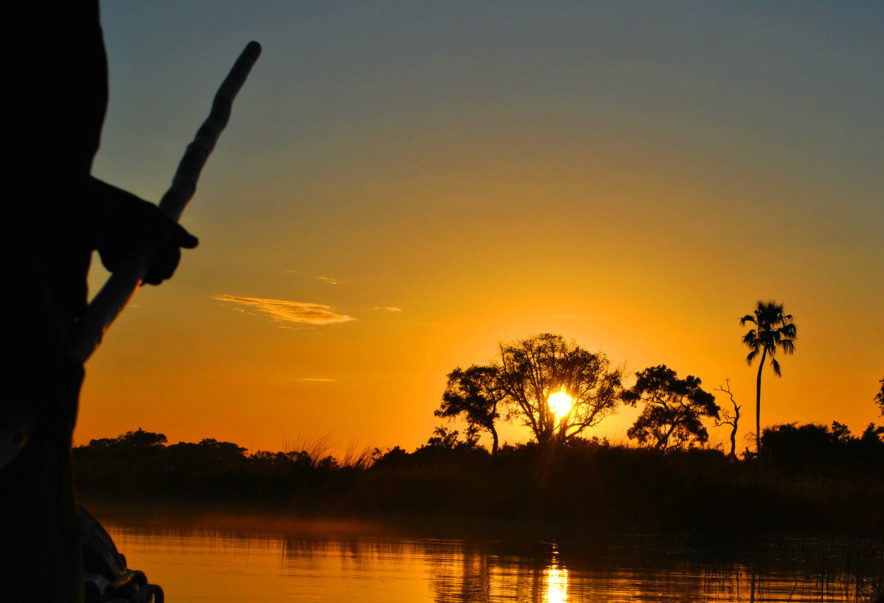 Safari Groepsreis Lodges 8 dagen botswana okavango delta en victoria falls avontuurlijk 73