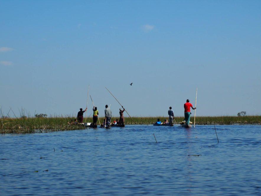 Safari Groepsreis Lodges 8 dagen botswana okavango delta en victoria falls avontuurlijk 69