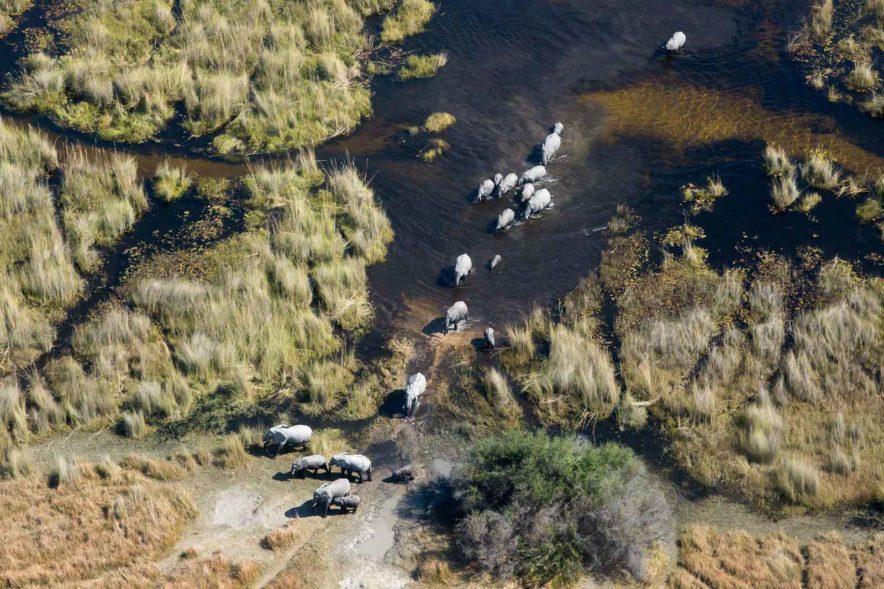 Safari Groepsreis Lodges 8 dagen botswana okavango delta en victoria falls avontuurlijk 68