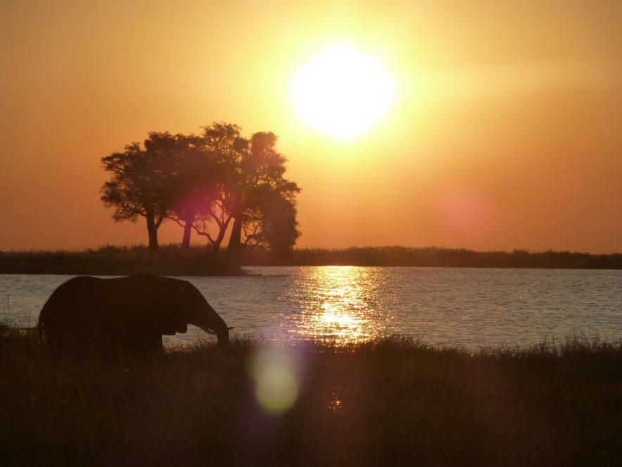 Safari Groepsreis Lodges 8 dagen botswana okavango delta en victoria falls avontuurlijk 67
