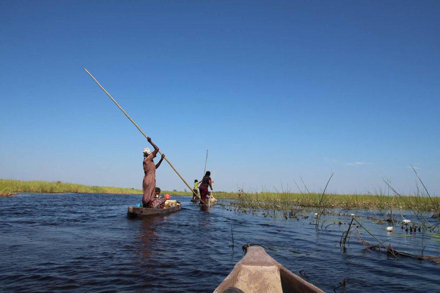 Safari Groepsreis Lodges 8 dagen botswana okavango delta en victoria falls avontuurlijk 65