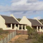 Safari Groepsreis Lodges - 8 DAGEN Kaapstad Tuinroute Tsitsikamma NP Addo Elephant NP 20