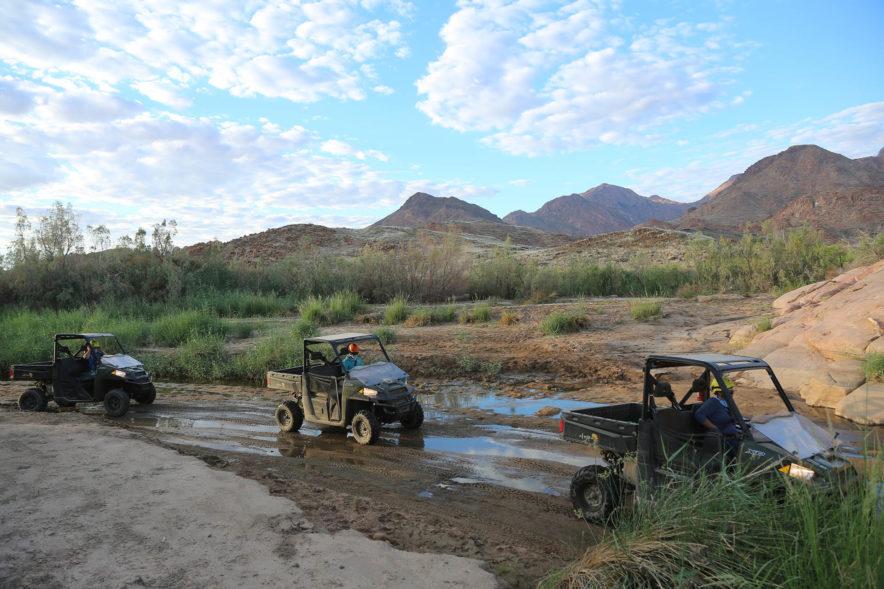 Safari Groepsreis Camping - 25 DAGEN KAAPSTAD, NAMIBIË, ETOSHA, BOTSWANA, OKAVANGO DELTA, VICTORIA FALLS & JOHANNESBURG 90