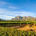 Safari Groepsreis Lodges 20 dagen Zuid-Afrika  Kruger park Swaziland, KwaZulu-Natal Tuinroute Lesotho en Kaapstad 68