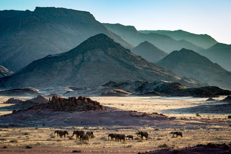 Safari Groepsreis Camping - 25 DAGEN KAAPSTAD, NAMIBIË, ETOSHA, BOTSWANA, OKAVANGO DELTA, VICTORIA FALLS & JOHANNESBURG 107