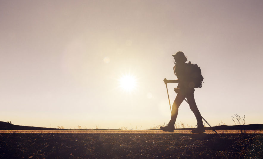 Safari Groepsreis Camping - 25 DAGEN KAAPSTAD, NAMIBIË, ETOSHA, BOTSWANA, OKAVANGO DELTA, VICTORIA FALLS & JOHANNESBURG 113