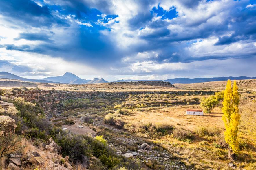 Safari Groepsreis Lodges 20 dagen Zuid-Afrika  Kruger park Swaziland, KwaZulu-Natal Tuinroute Lesotho en Kaapstad 83