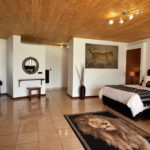 Safari Groepsreis Lodges - 13 DAGEN HET BESTE VAN ZUID-AFRIKA 2