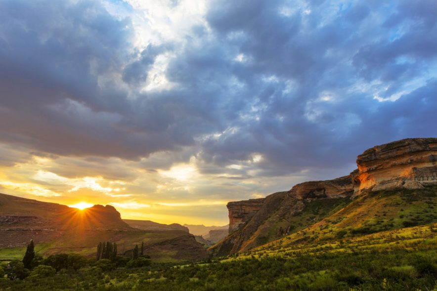 Safari Groepsreis Lodges 20 dagen Zuid-Afrika  Kruger park Swaziland, KwaZulu-Natal Tuinroute Lesotho en Kaapstad 98