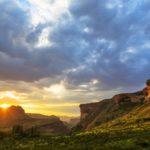 Safari Groepsreis Lodges 20 dagen Zuid-Afrika  Kruger park Swaziland, KwaZulu-Natal Tuinroute Lesotho en Kaapstad 36