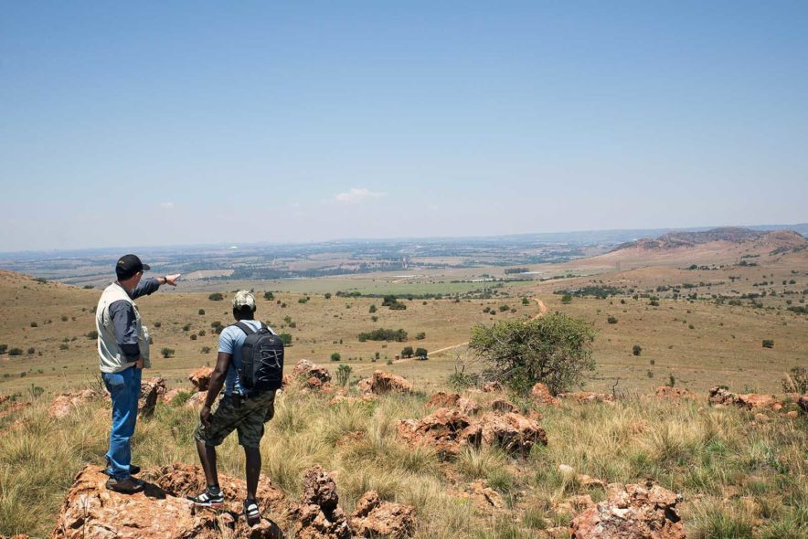 Safari Groepsreis Lodges 20 dagen Zuid-Afrika  Kruger park Swaziland, KwaZulu-Natal Tuinroute Lesotho en Kaapstad 114