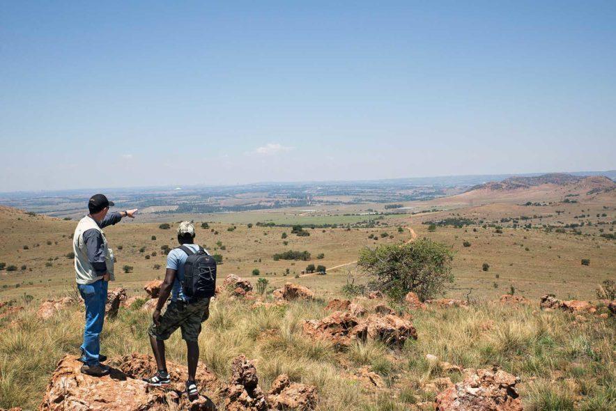 Safari Groepsreis Lodges - 13 DAGEN HET BESTE VAN ZUID-AFRIKA 73