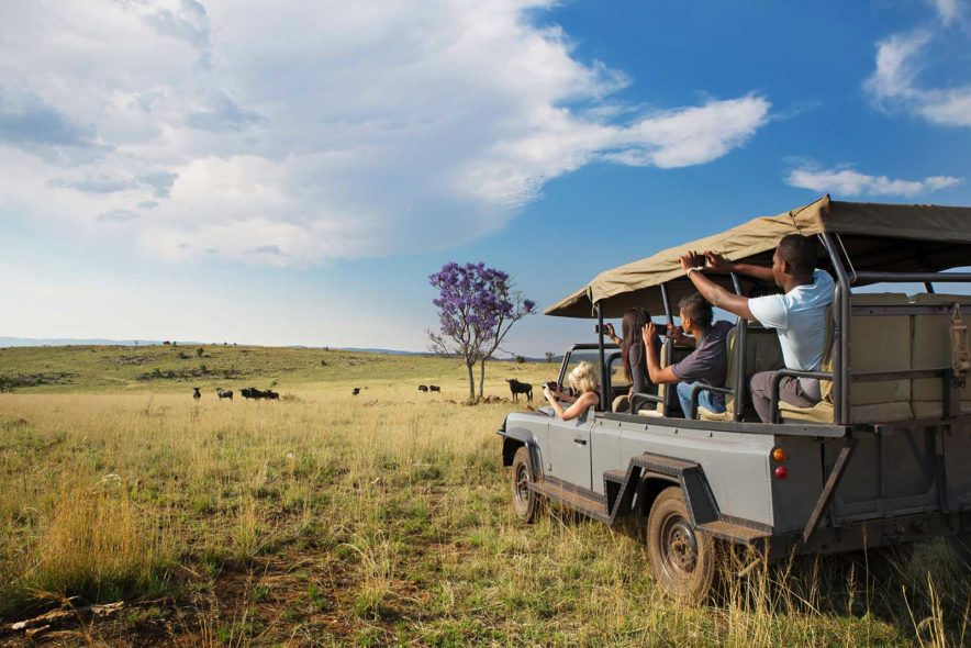 Safari Groepsreis Lodges 20 dagen Zuid-Afrika  Kruger park Swaziland, KwaZulu-Natal Tuinroute Lesotho en Kaapstad 115