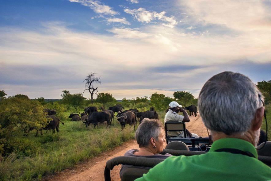 Safari Groepsreis Lodges 20 dagen Zuid-Afrika  Kruger park Swaziland, KwaZulu-Natal Tuinroute Lesotho en Kaapstad 138