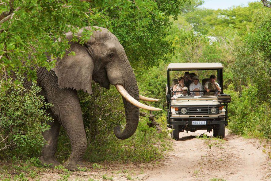 Safari Groepsreis Lodges 20 dagen Zuid-Afrika  Kruger park Swaziland, KwaZulu-Natal Tuinroute Lesotho en Kaapstad 118