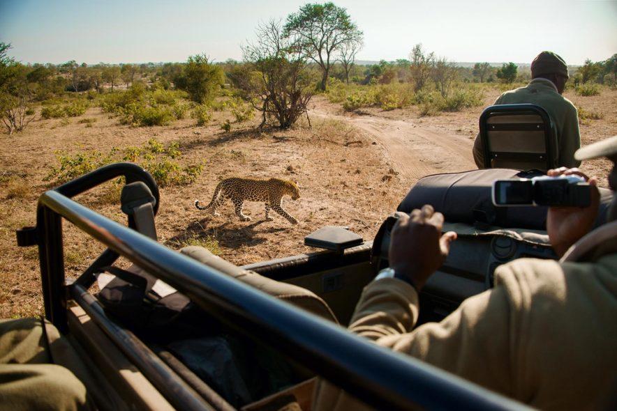 Safari Groepsreis Lodges - 13 DAGEN HET BESTE VAN ZUID-AFRIKA 78