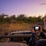 Safari Groepsreis Lodges 20 dagen Zuid-Afrika  Kruger park Swaziland, KwaZulu-Natal Tuinroute Lesotho en Kaapstad 9