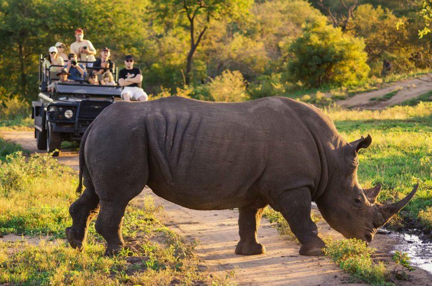 Safari Groepsreis Lodges - 13 DAGEN HET BESTE VAN ZUID-AFRIKA 81