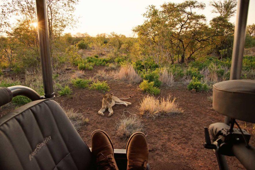 Safari Groepsreis Lodges 20 dagen Zuid-Afrika  Kruger park Swaziland, KwaZulu-Natal Tuinroute Lesotho en Kaapstad 120