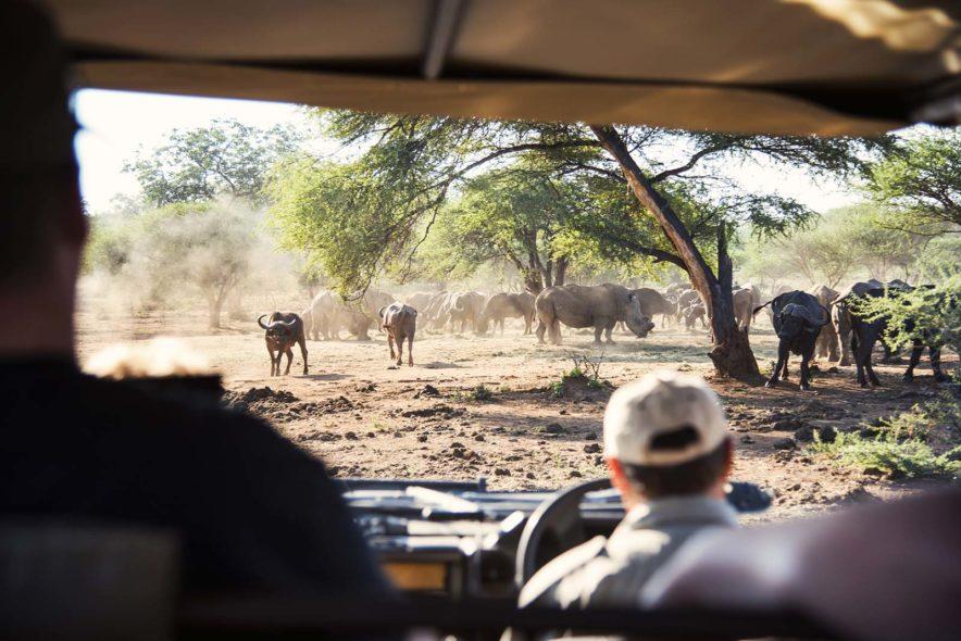 Safari Groepsreis Lodges 20 dagen Zuid-Afrika  Kruger park Swaziland, KwaZulu-Natal Tuinroute Lesotho en Kaapstad 122