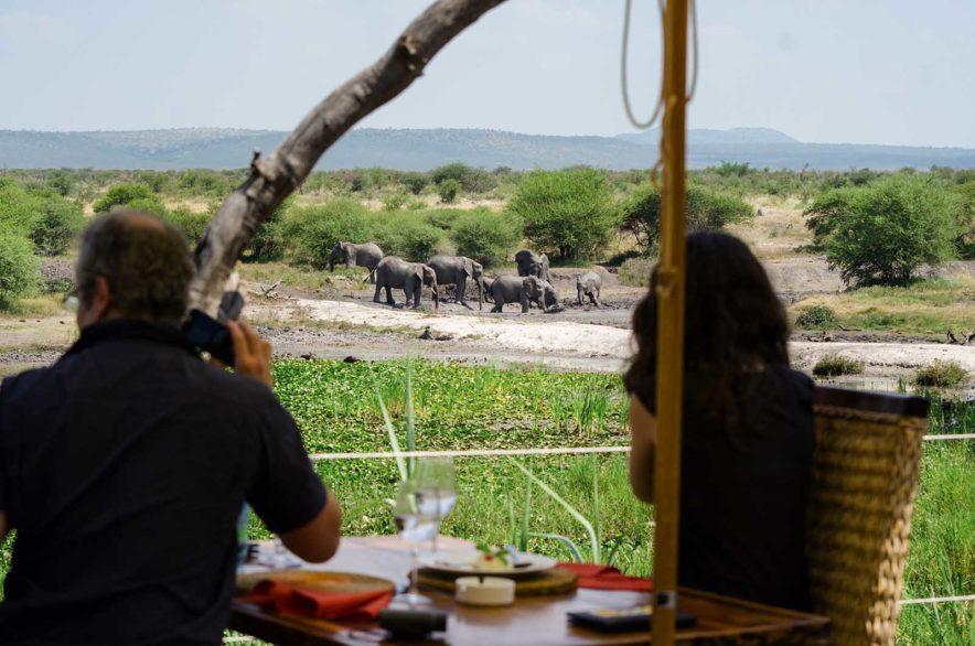 Safari Groepsreis Lodges - 13 DAGEN HET BESTE VAN ZUID-AFRIKA 87