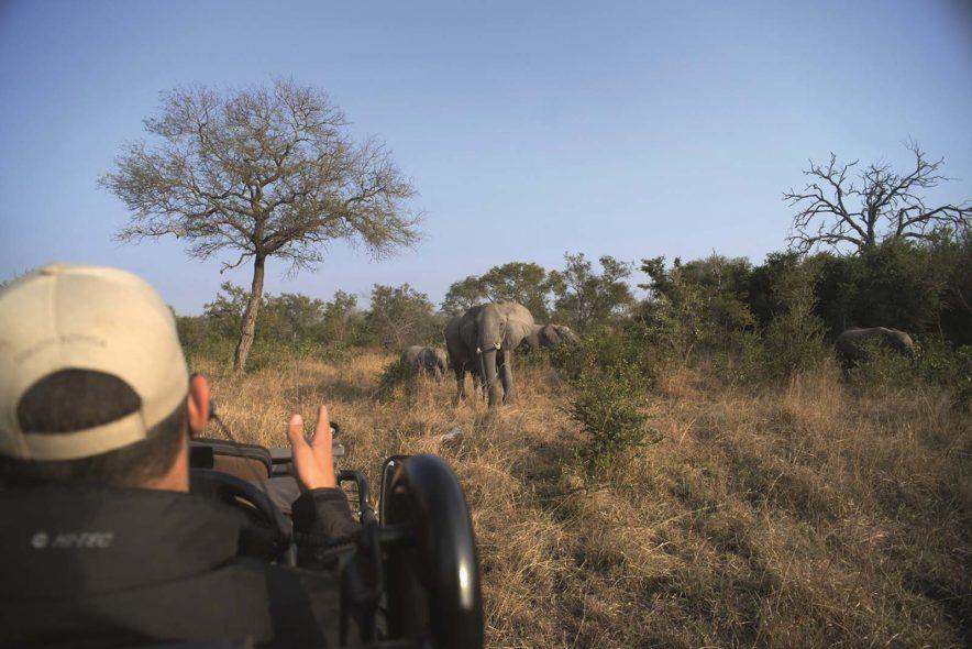 Safari Groepsreis Lodges - 13 DAGEN HET BESTE VAN ZUID-AFRIKA 89