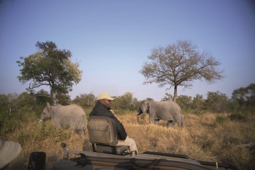 Safari Groepsreis Lodges 20 dagen Zuid-Afrika  Kruger park Swaziland, KwaZulu-Natal Tuinroute Lesotho en Kaapstad 124