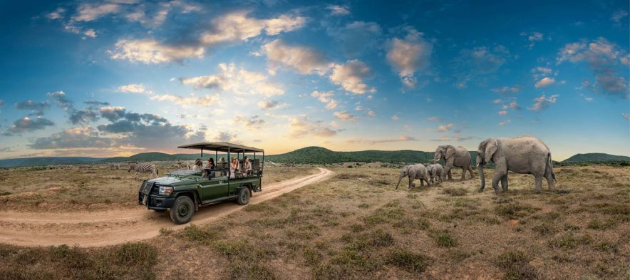 Safari Groepsreis Lodges 20 dagen Zuid-Afrika  Kruger park Swaziland, KwaZulu-Natal Tuinroute Lesotho en Kaapstad 126