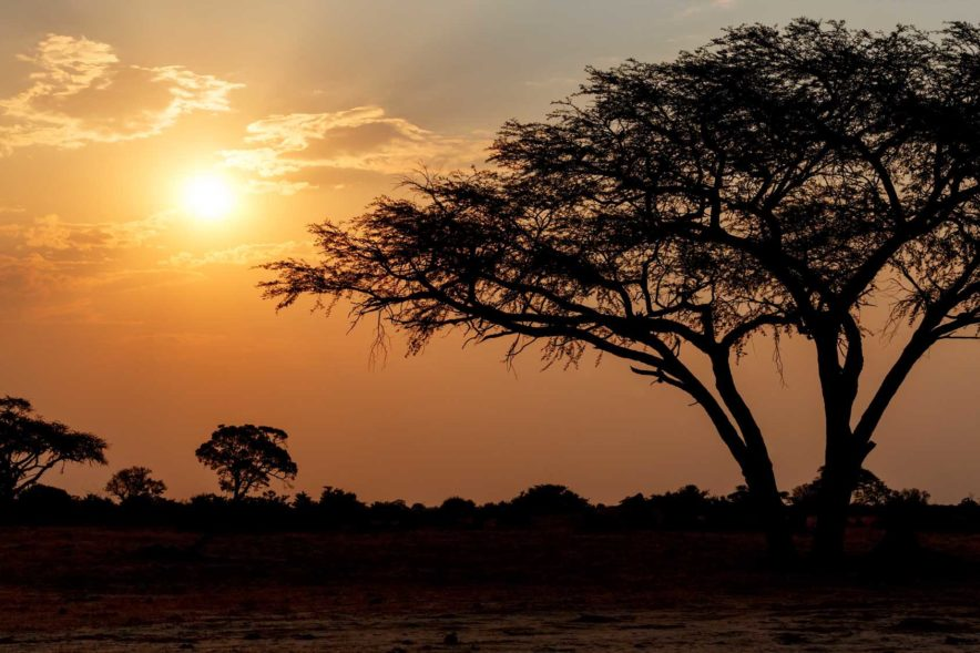 Safari Groepsreis Lodges - 13 DAGEN HET BESTE VAN ZUID-AFRIKA 50