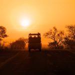Safari Groepsreis Lodges 20 dagen Zuid-Afrika  Kruger park Swaziland, KwaZulu-Natal Tuinroute Lesotho en Kaapstad 6