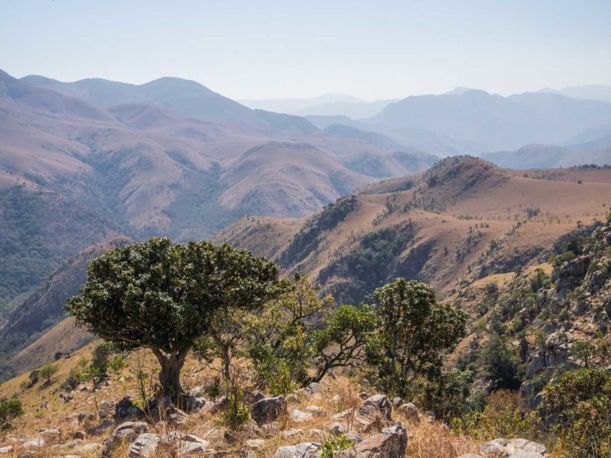 Safari Groepsreis Lodges - 13 DAGEN HET BESTE VAN ZUID-AFRIKA 112
