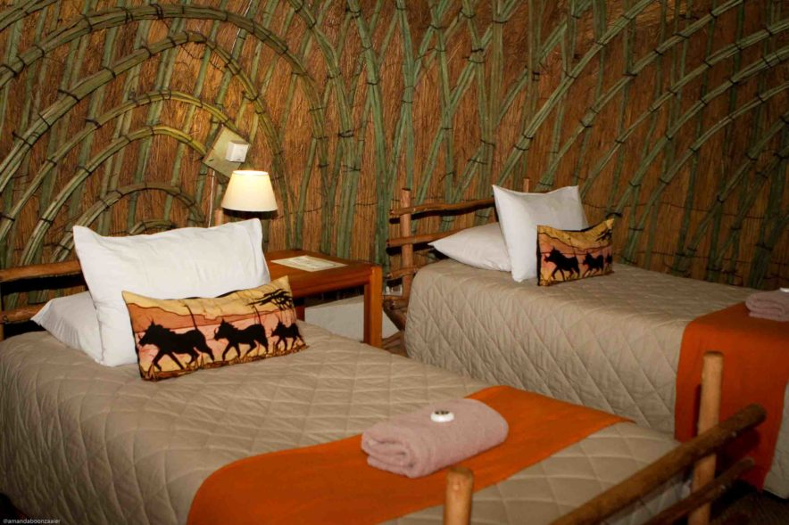 Safari Groepsreis Lodges - 13 DAGEN HET BESTE VAN ZUID-AFRIKA 106