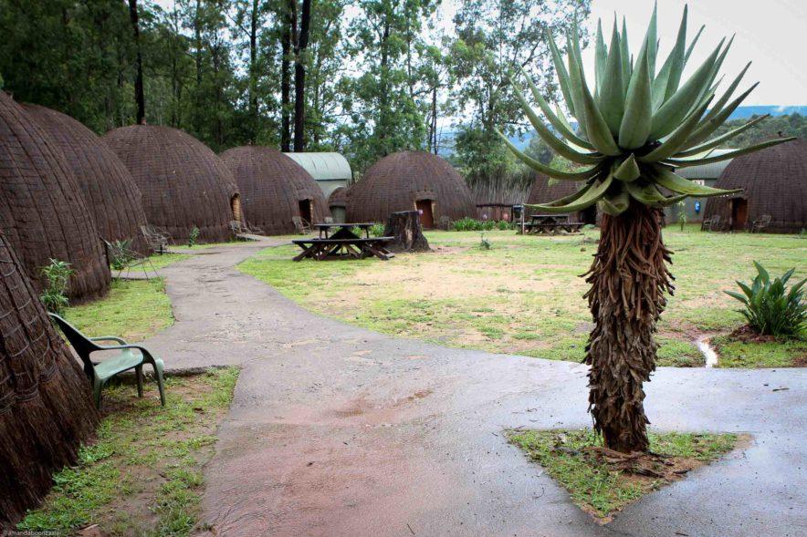 Safari Groepsreis Lodges - 13 DAGEN HET BESTE VAN ZUID-AFRIKA 107