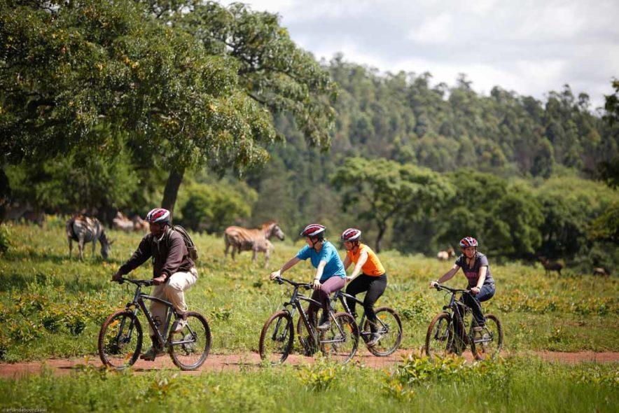 Safari Groepsreis Lodges - 13 DAGEN HET BESTE VAN ZUID-AFRIKA 104
