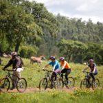 Safari Groepsreis Lodges - 30 DAGEN KAAPSTAD, ZUID-AFRIKA, NAMIBIË, BOTSWANA, VICTORIA FALLS, ZIMBABWE, JOHANNESBURG, KRUGERPARK & ESWATINI 102