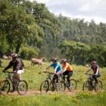 Safari Groepsreis Lodges 20 dagen Zuid-Afrika  Kruger park Swaziland, KwaZulu-Natal Tuinroute Lesotho en Kaapstad 16