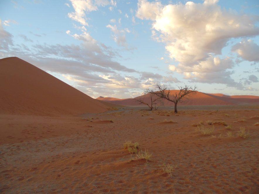 Safari Groepsreis Camping - 25 DAGEN KAAPSTAD, NAMIBIË, ETOSHA, BOTSWANA, OKAVANGO DELTA, VICTORIA FALLS & JOHANNESBURG 139