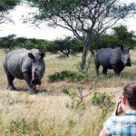Safari Groepsreis Lodges - 30 DAGEN KAAPSTAD, ZUID-AFRIKA, NAMIBIË, BOTSWANA, VICTORIA FALLS, ZIMBABWE, JOHANNESBURG, KRUGERPARK & ESWATINI 84